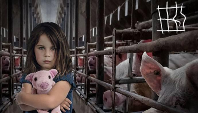 end the cage basta animali in gabbia