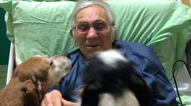 """Imola, anziano riabbraccia i suoi cani in ospedale:""""Era il mio ultimo desiderio"""""""