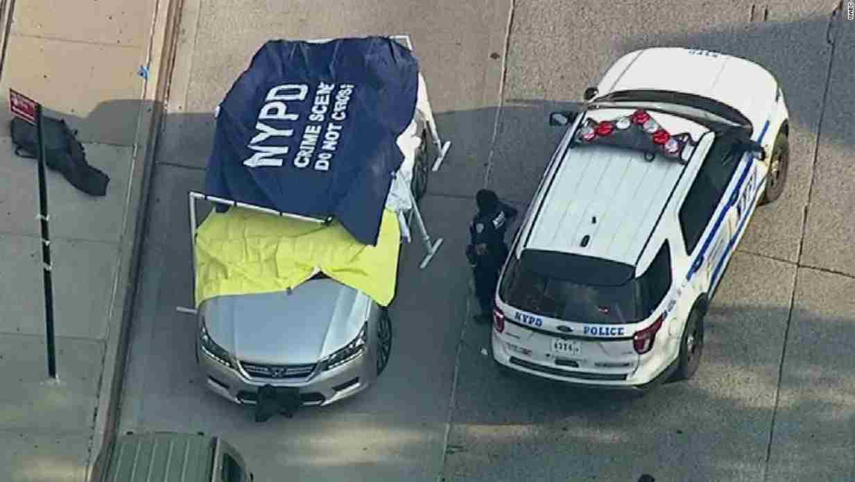 Morti gemellini dimenticati in auto a Ny