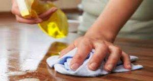 Maniaci del pulito