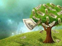 Filiera sostenibile, blocco del greenwashing: ecco il perché