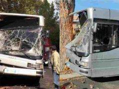 Bus contro albero