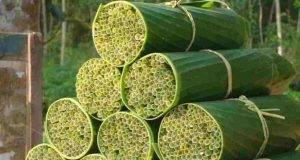 Cannucce biodegradabili