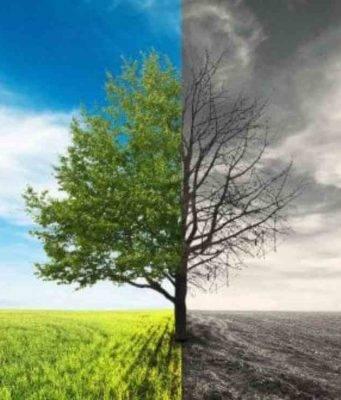 Clima, la crisi avanza: cosa ci riserva il futuro?