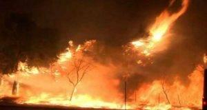 Incendio Los Angeles
