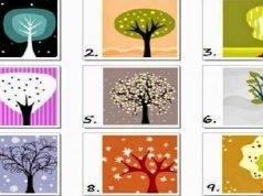 test della personalità degli alberi