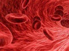 colesterolo e arterie