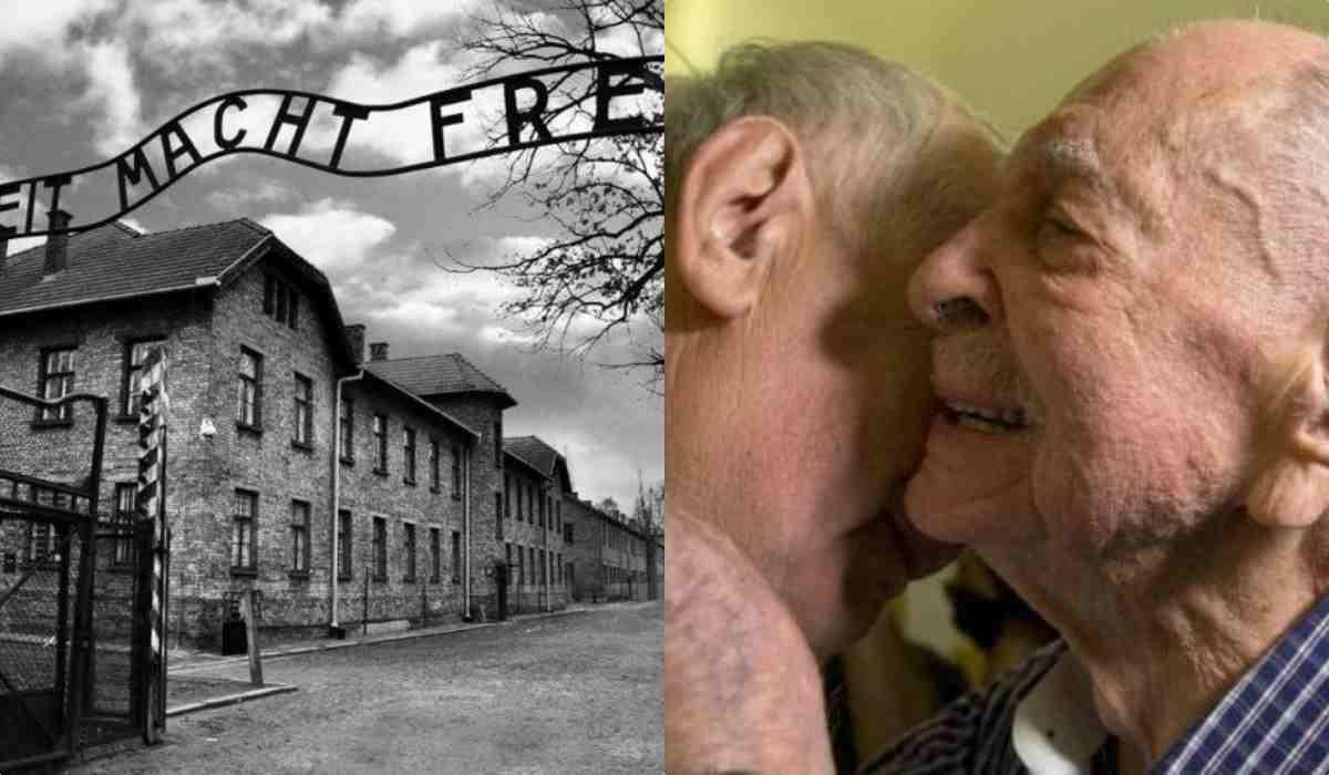 Olocausto sopravvissuto