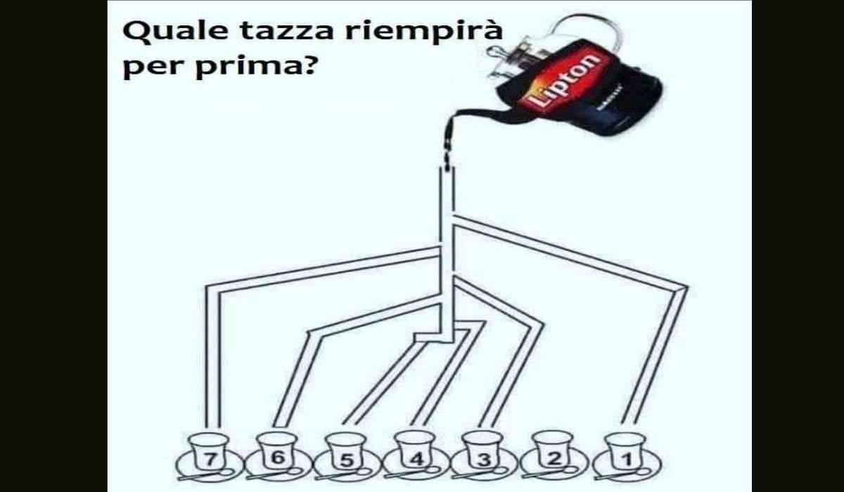 Rompicapo tazza the