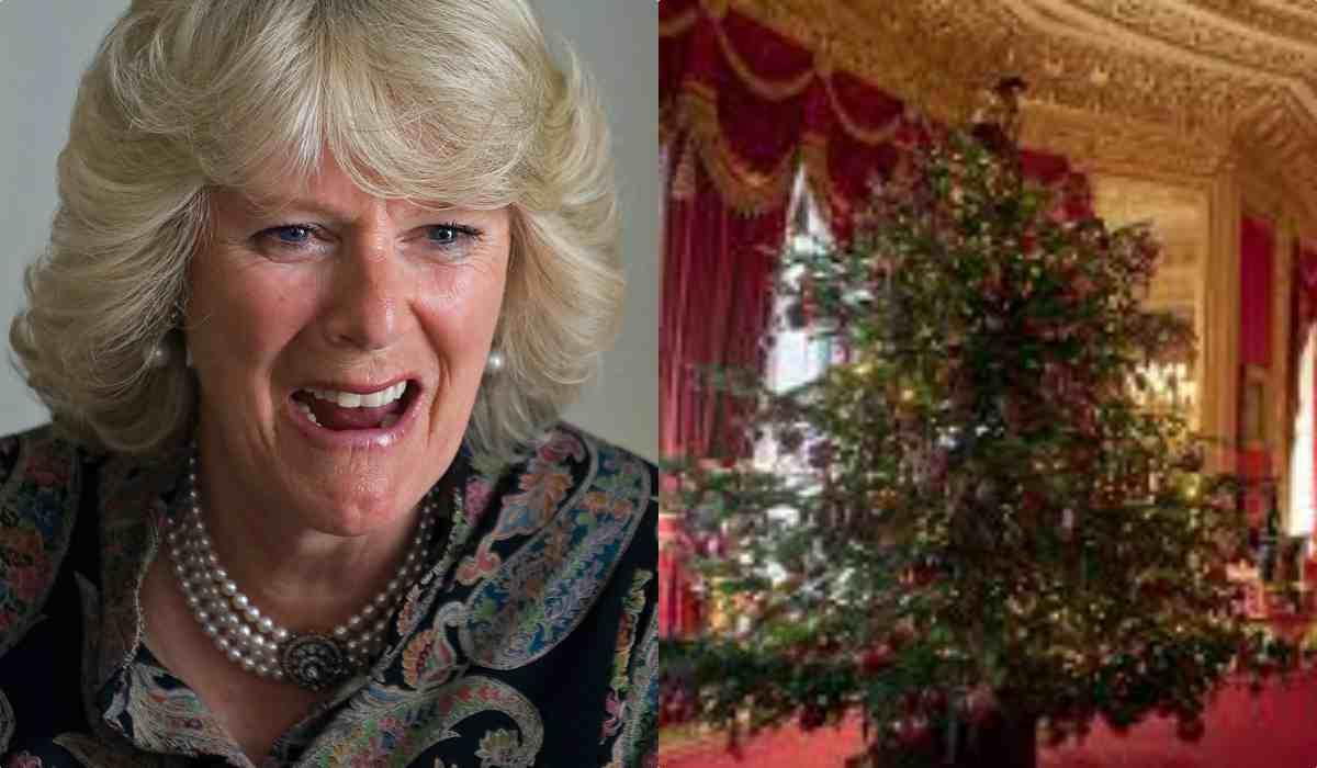Camilla furiosa a Natale