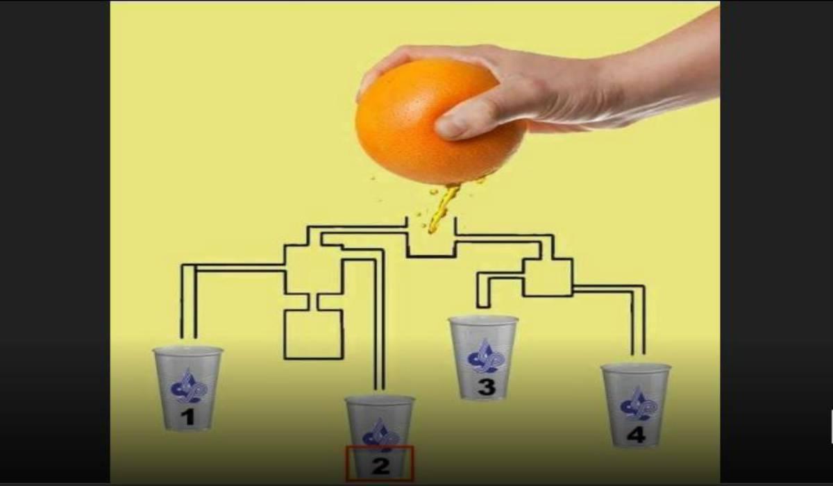 Rompicapo arancia soluzione
