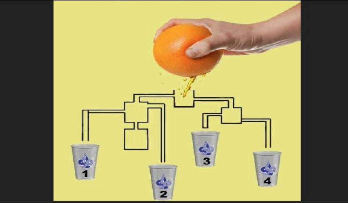 Rompicapo arancia e bicchieri