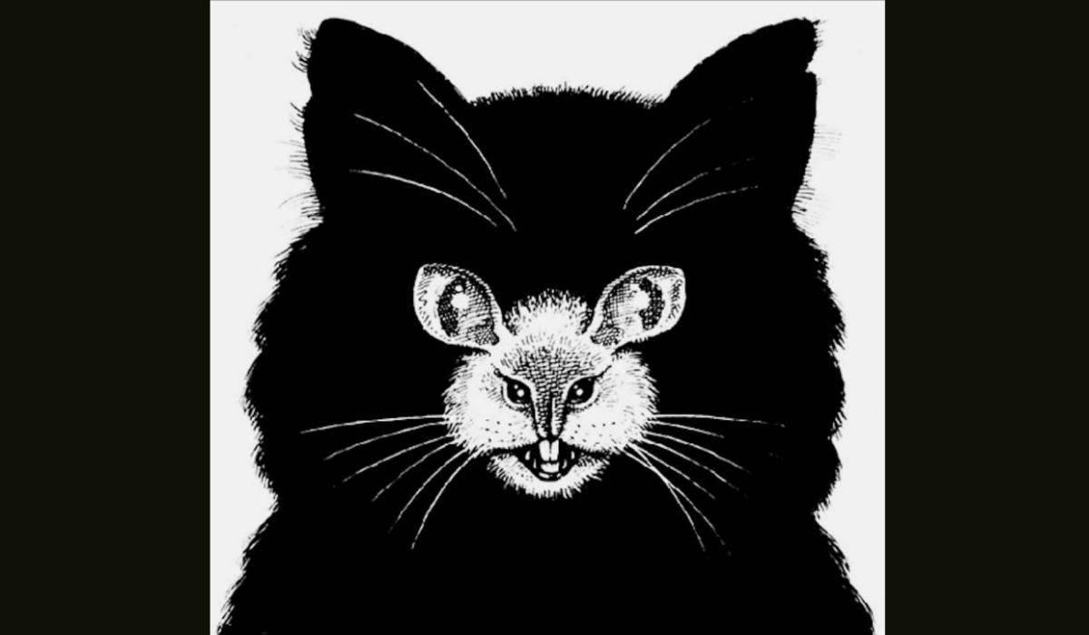 Test personalità gatto-topo
