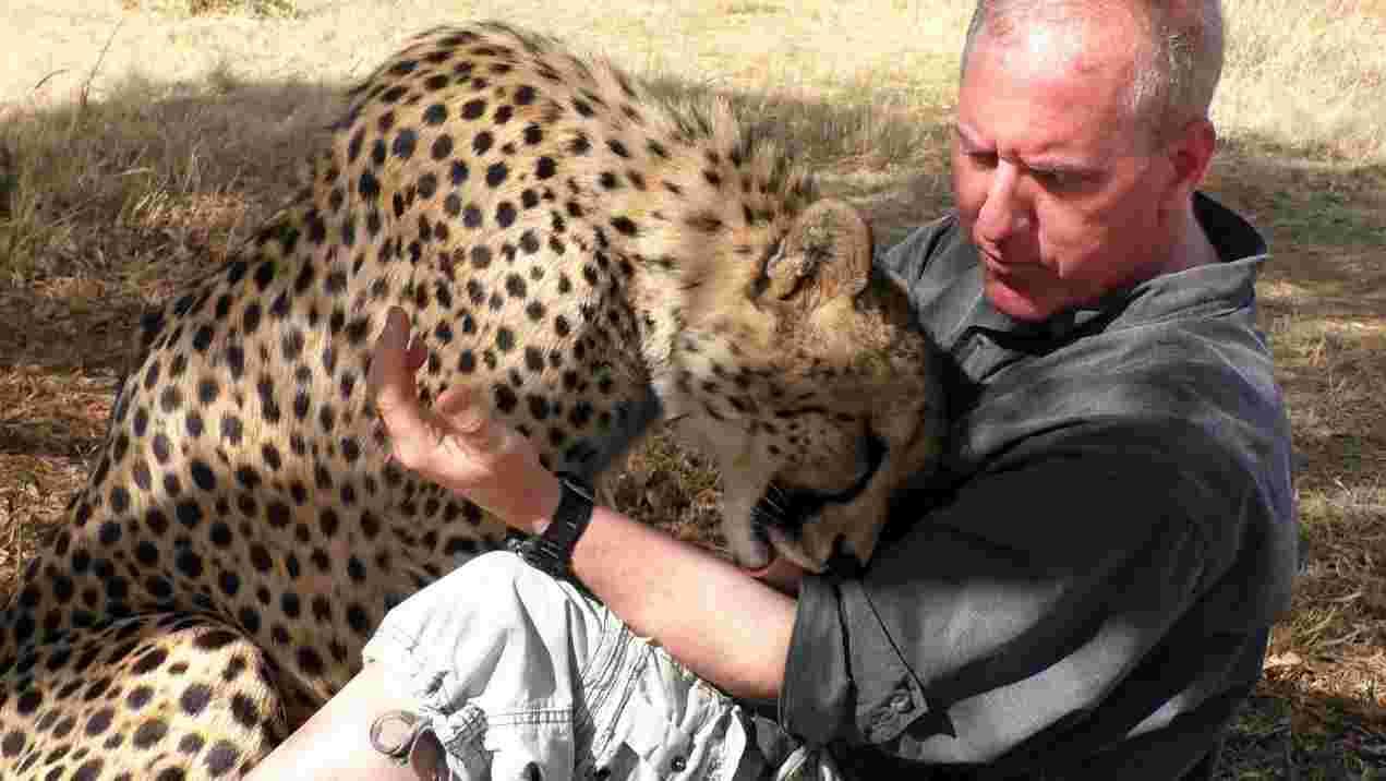 L'amicizia tra un fotografo e il ghepardo: la loro storia ha commosso il web