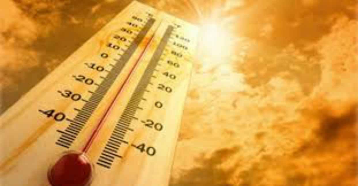 Allarme Terra, gli ultimi 5 anni sono i più caldi dal 1880: il report Nasa e Noaa