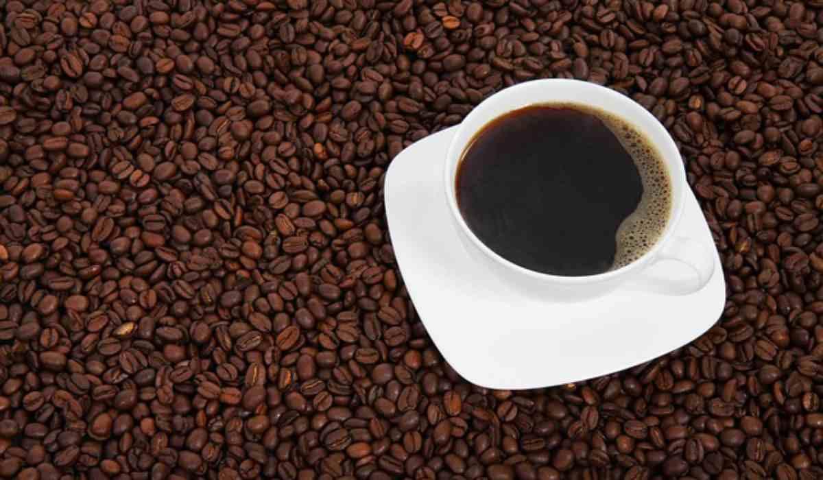 caffè amaro