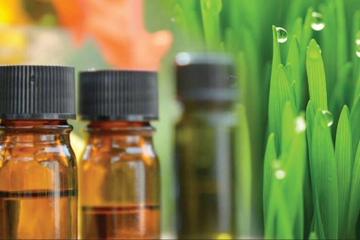 olio di palmarosa
