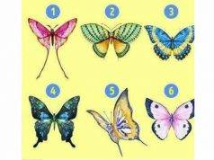 test psicologico farfalle