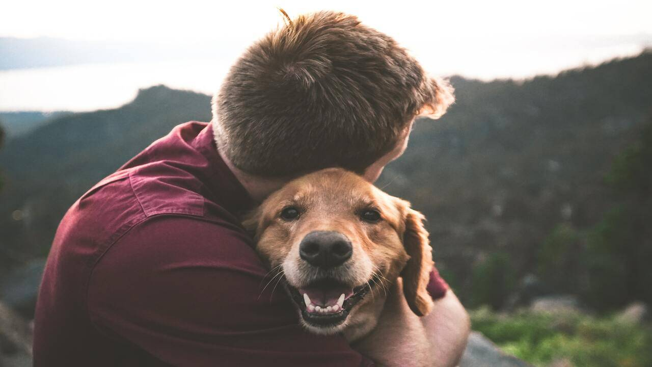 Cane abbracciato dal padrone