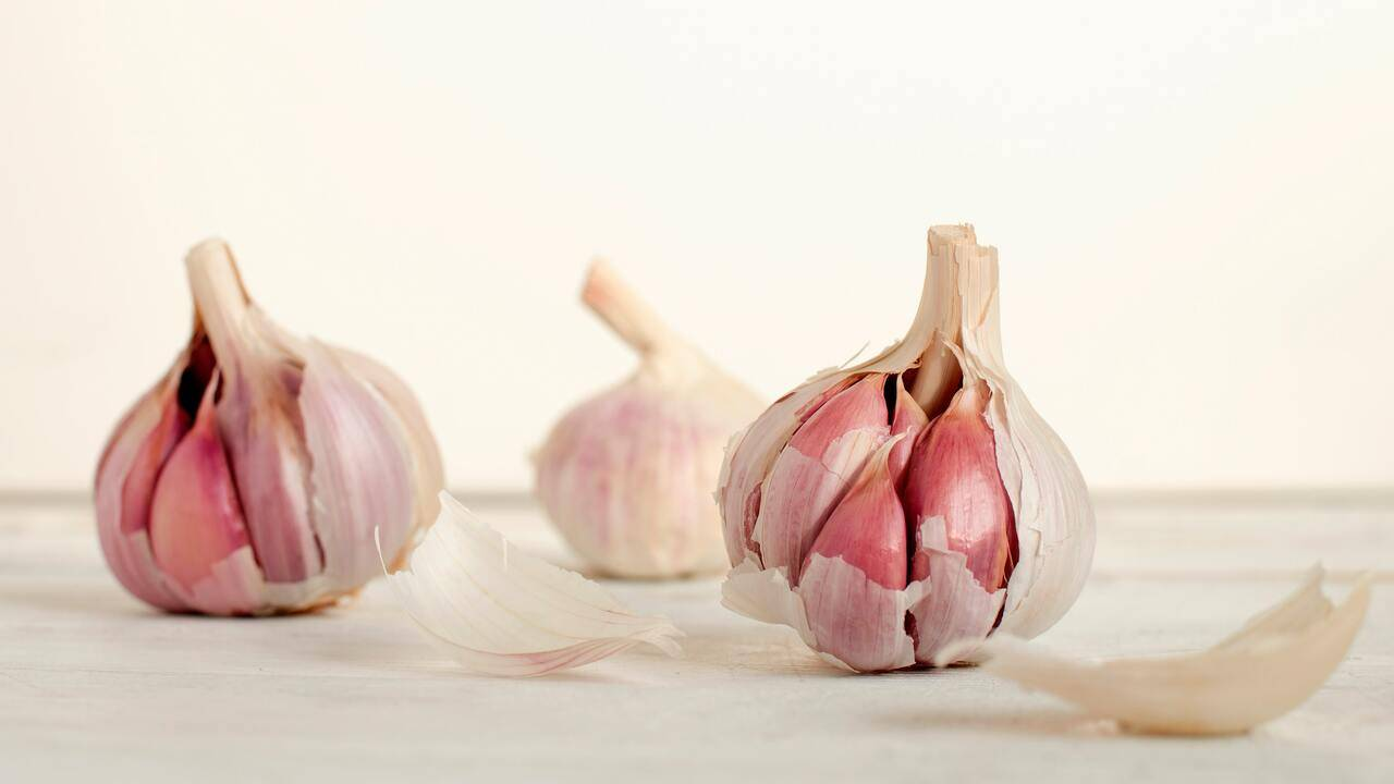 trattamenti a base di aglio