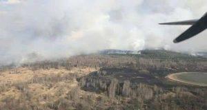 incendio-nella-foresta-radioattiva