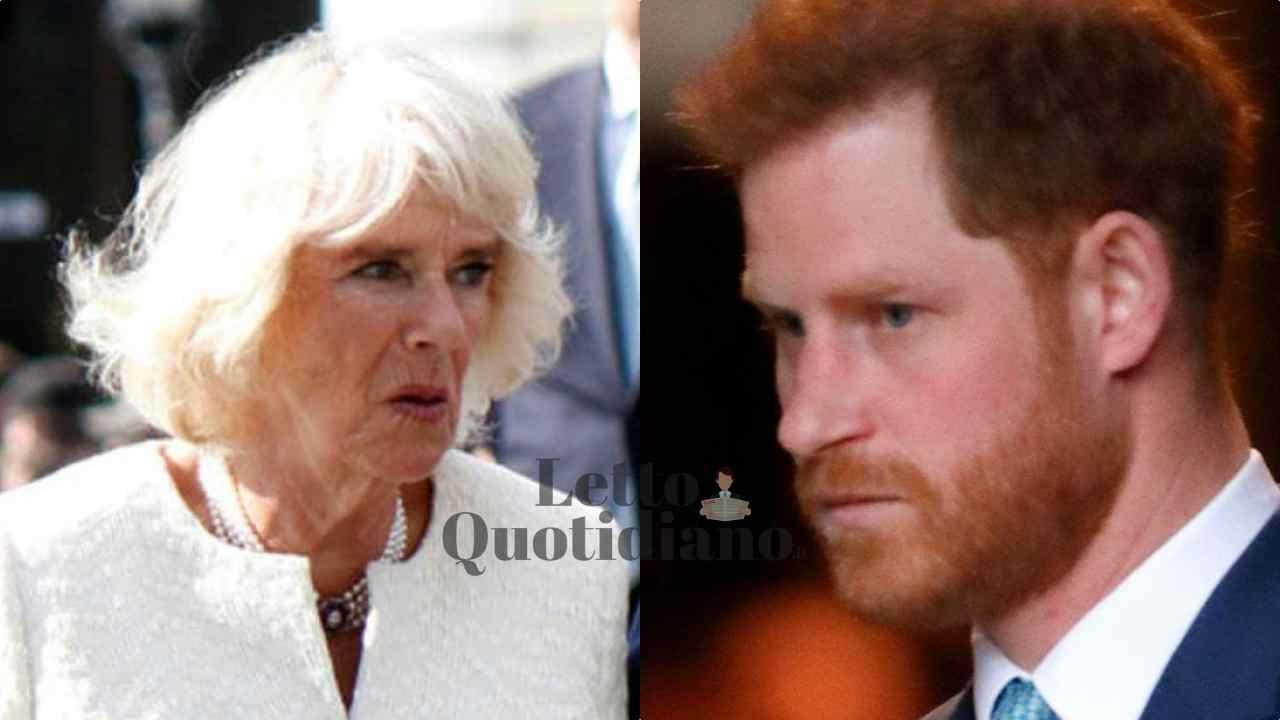 """Camilla Parker, la verità del Principe Harry sul loro rapporto: """"La penso così"""""""
