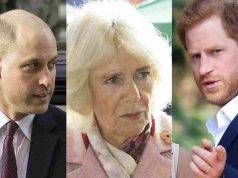 "Camilla Parker, ""Era malata"": l'indiscrezione che fa infuriare Harry e William"