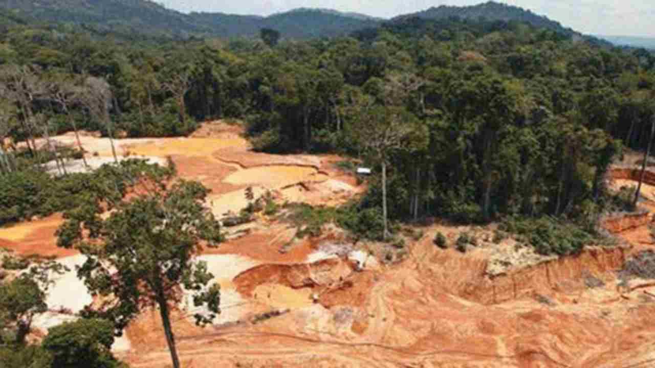 deforestazione amazzonia colombiana