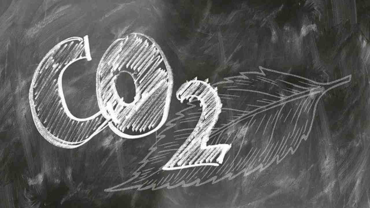 CO2 maggio