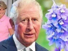 Principe Carlo Lady Diana