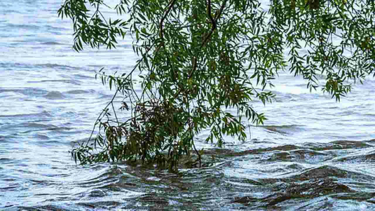 Lago di Garda, recuperato il corpo senza vita del sub scomparso