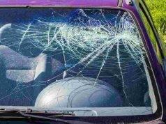 Strage di famiglia, trovati morti in auto 4 bambini insieme ai genitori e i loro gatti