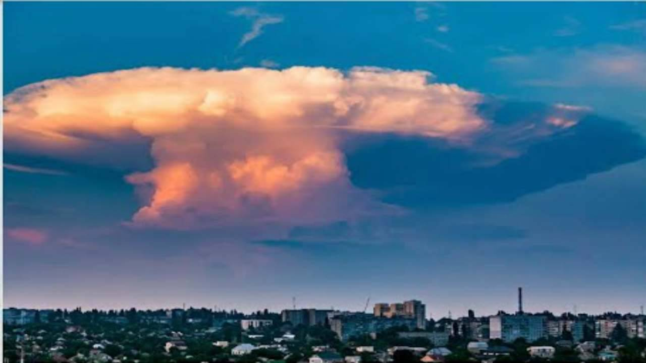 nuvola fungo kiev