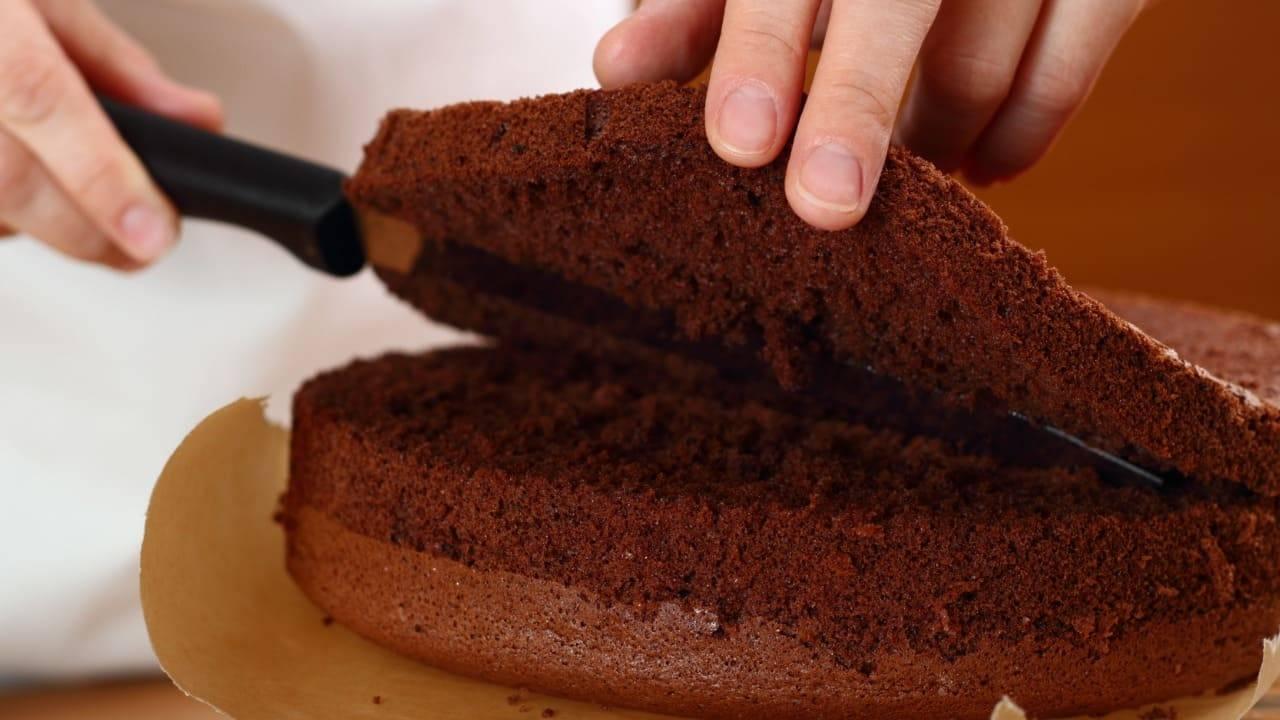 Ricetta Pan Di Spagna Al Cacao Soffice.Pan Di Spagna Al Cacao Soffice Ricetta Facile Per Tutti Pronto In 13 Minuti