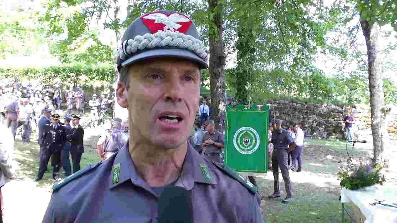 La fuga dell'orso M49 fa dimettere il dirigente forestali del Trentino