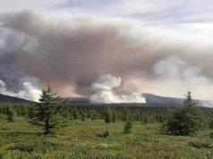 incendi siberia quadruplicano