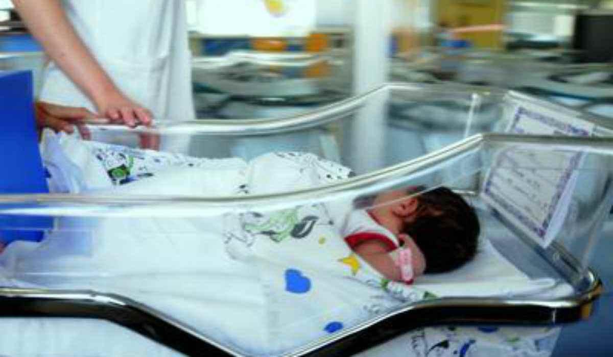 neonata culla