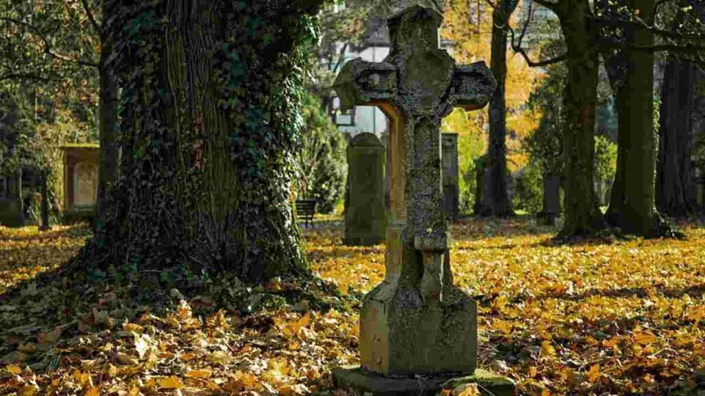 truffa cremazioni