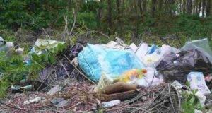 cmpionato mondiale raccolta rifiuti