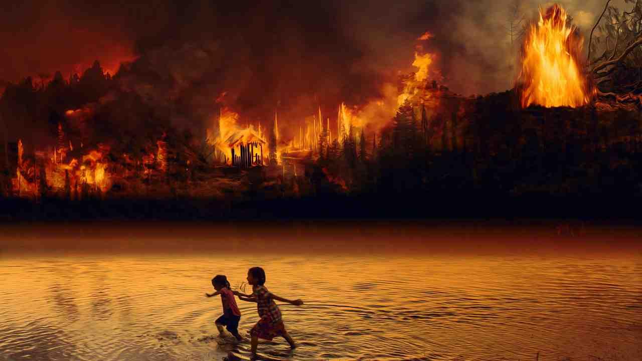 amazzonia greenpeace friday for future