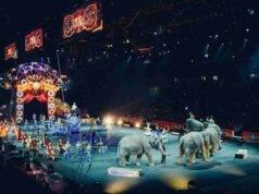 circo Francia