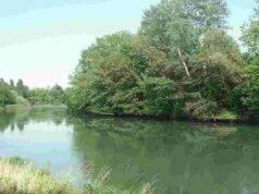 disperso fiume sile