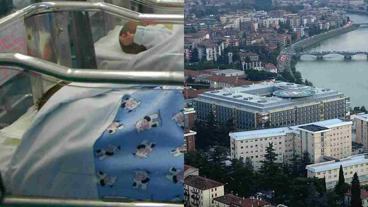 Batterio killer a Verona: partita indagine