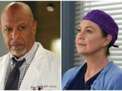 Webber e Meredith, Grey's Anatomy 16