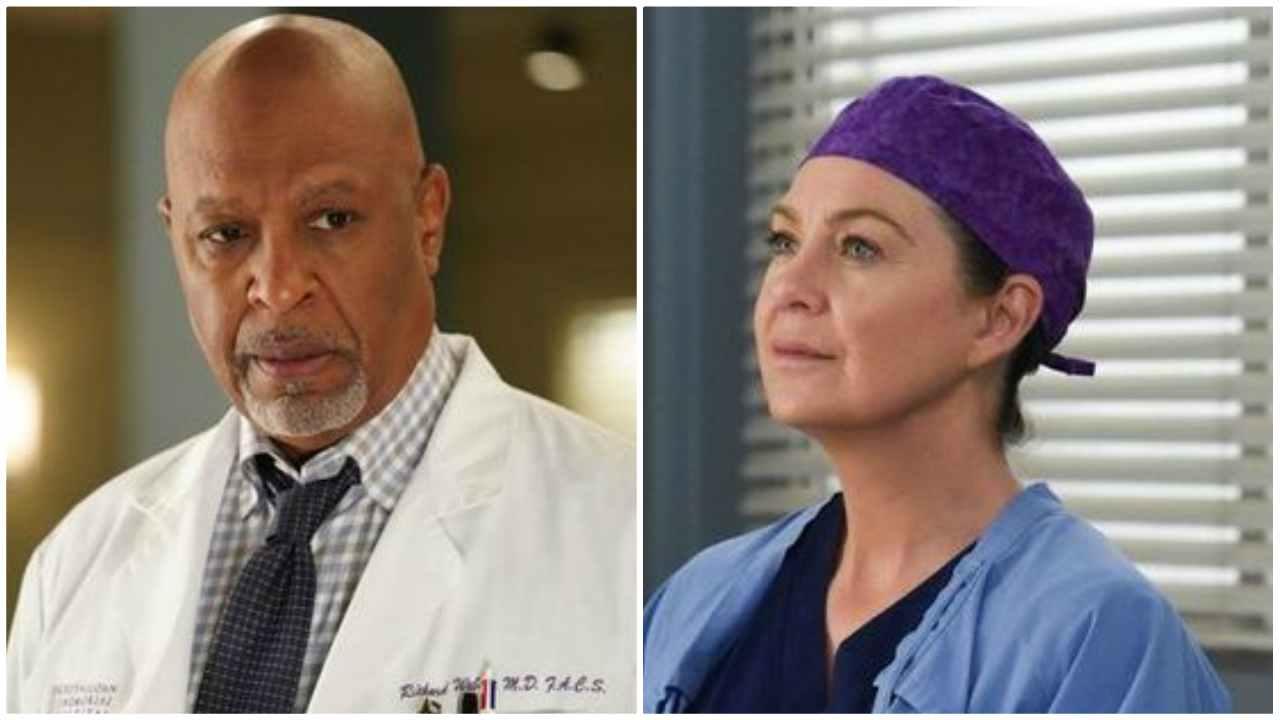 Webber e Meredith, Grey's Anatomy 16