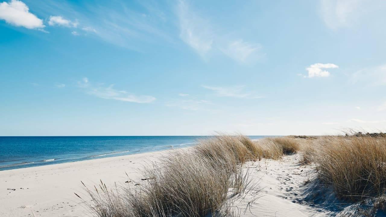 feto abbandonato spiaggia