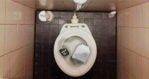 WC, perchè mettere una bustina di tè?