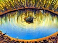 TEST: cosa vedi?