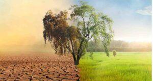 La giornata mondiale dell'acqua, i dati su un'emergenza globale